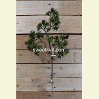 Искусственная сосна ветка, 39 см
