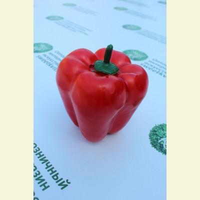 Искусственные овощи. Болгарский перец