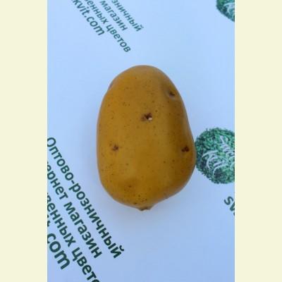 Искусственные овощи. Картофель, 11 см