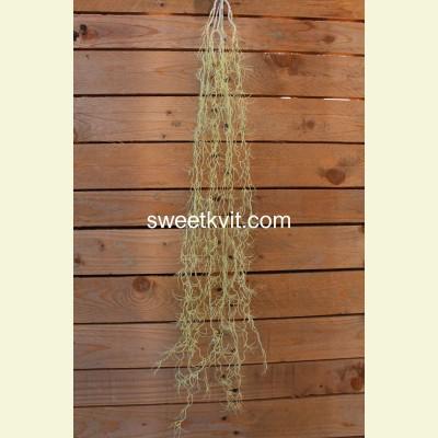 Искусственная водоросль лиана, 90 см