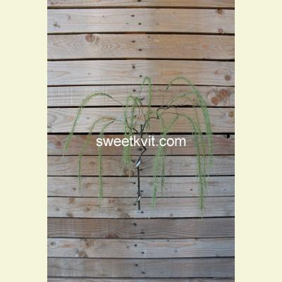 Искусственная водоросль ветка, 70 см