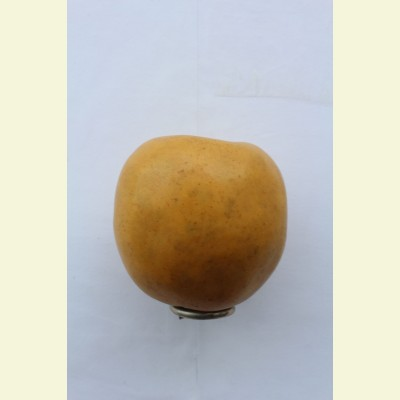 Искусственные фрукты. Яблоко, 10 см