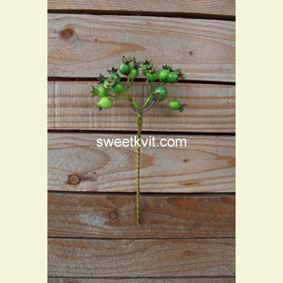 Искусственные ягоды. Шиповник ветка, 24 см