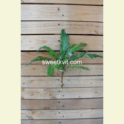 Искусственная трава куст, 36 см