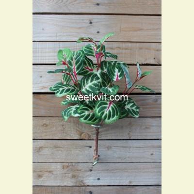 Искусственная ирезина куст, 35 см